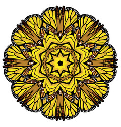 beautiful circular background fractal image vector image