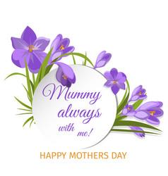 crocus flowers spring floral beautiful violet vector image