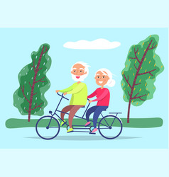 Elderly couple ride bicycle on date grandparents vector