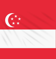 Flag singapore swaying in wind realistic vector