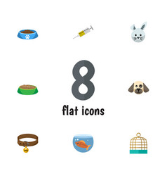 Flat icon pets set of hound necklace bunny vector