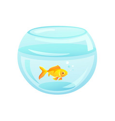 Golden fish placed at aquarium vector