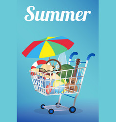 summer item on a shopping cart vector image