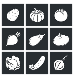 Vegetables set of nine Icons vector image