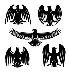 black eagle hawk or falcon heraldic symbol set vector image vector image