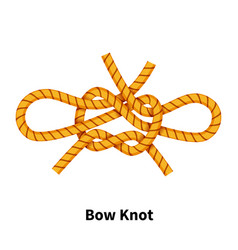 Bow sea knot bright colorful how-to guide on vector