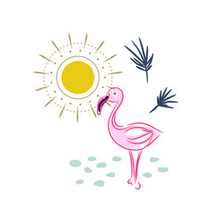 flamingo and sun isolated print vector image