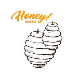 Honey sketches apiary honey hand drawn superfood vector