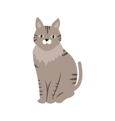 Pet Cat vector image