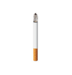 realistic burning cigarette on white background vector image
