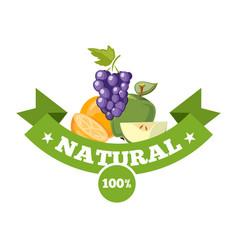 natural fresh food fruits logo badge vector image vector image