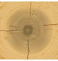 wood cross section background vector image vector image