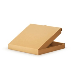 Cardboard box for pizza vector image