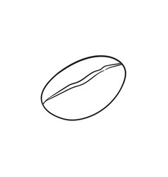 coffee bean hand drawn sketch icon vector image