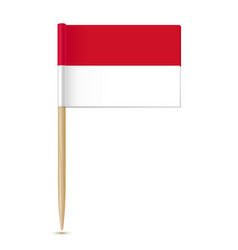 flag indonesia vector image