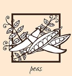 Hand drawn peas vector