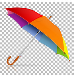 high detailed umbrella vector image