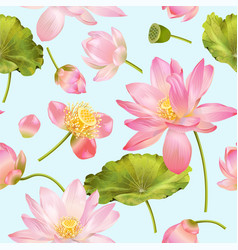 lotus flower pattern vector image