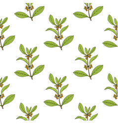 Seamless pattern with sweet osmanthus vector