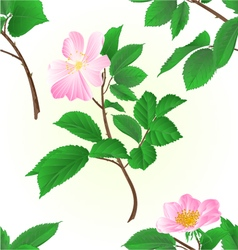 Seamless texture twig wild roses vector image