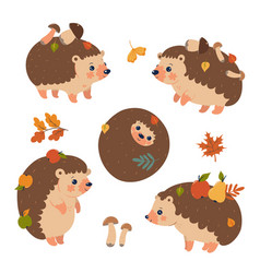 set cute autumn hedgehogs isolated on a white vector image