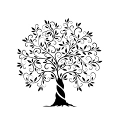 Olive tree outline curl silhouette vector image vector image