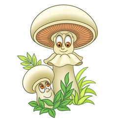 Champignons or white mushrooms vector