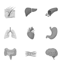 Organs set icons in monochrome style Big vector