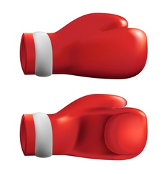 Red Box gloves vector image