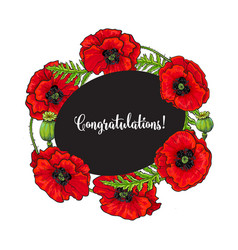 Red poppy flower blossom blooming template vector