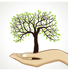 small tree on hand vector image