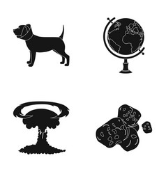 Veterinary medicine and or web icon in black style vector
