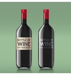 Transparent realistic glass bottles for wine vector image vector image