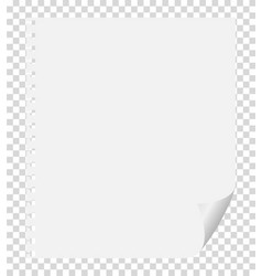 A piece of paper with a curved corner on a vector