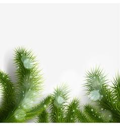 green Christmas tree branch vector image