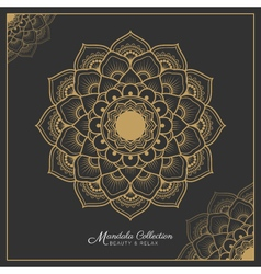 Henna mandala decorative ornament design vector
