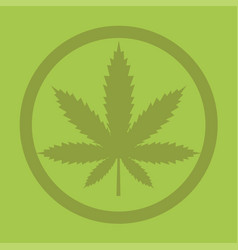 marijuana or cannabis vector image