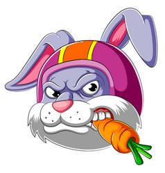 rabbit wearing helmet racer vector image