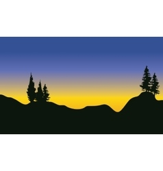 Silhouette of fir trees on the mountain vector
