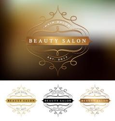 Beauty salon frame logo design vector image