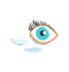 human eye and two contact lenses cartoon vector image