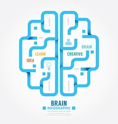 infographics blue paper brain design diagram line vector image vector image