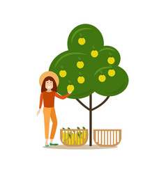 apple hunter people concept flat vector image