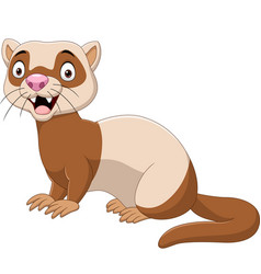 cartoon funny ferret isolated vector image