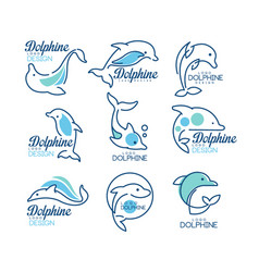 dolphine logo templates set nautical design vector image vector image
