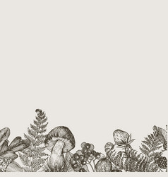 Forest plants border with mushrooms fern berries vector