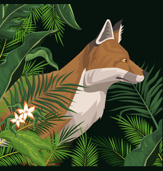 Fox in the jungle over black backgroud vector