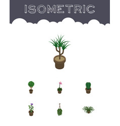 Isometric flower set of plant houseplant grower vector