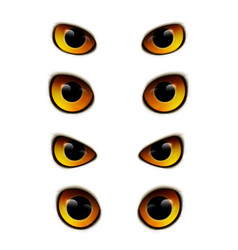 Owl eyes realistic collection vector