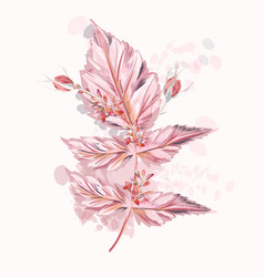 pink leaf with buds and ink spots watercolor style vector image
